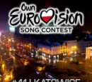 Own Eurovision Song Contest 41