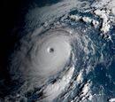 Typhoon Minnie