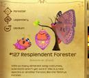 Resplendent Forester
