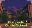 مدرسة موشينوكي المتوسطة