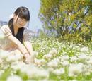 Maruyama Karin