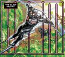 Black Racer Prime Earth 001.jpg