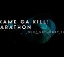 Akame Ga Kill! Marathon