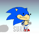 Sunky the Hedgehog