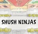 Ninja ciszy