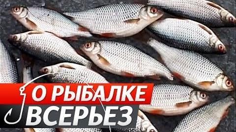 Про Риболовлю Всерйоз - Випуск 15 - Ловля на жерлиці