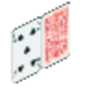 RCT 1 Fence Playing Card Wall 2.png