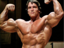 Arnold-schwarzenegger-pics.png