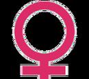 Userbox Femenino