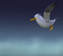 Seagulls/Gallery/Pup-Fu!