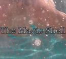 The Magic Shell Mermaids