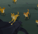 Dingo Pack (Wild Kratts)
