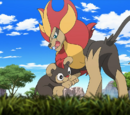 XY097: A Fiery Rite of Passage!