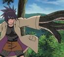 Скрытые Тенью Руки-Змеи