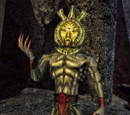 Morrowind: Postacie