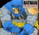 Batman: The Dark Knight Returns Vol.1 2