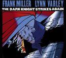 The Dark Knight Strikes Again Vol.1 2