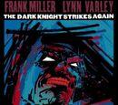 The Dark Knight Strikes Again Vol.1 3