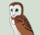 Sophia (Owl)