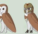 Kenny (Owl)