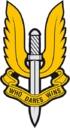 British SAS Insig.png