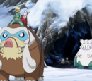 XY083: Over the Mountain of Snow!