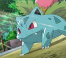 Shauna's Pokémon