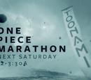 One Piece Marathon (December 2015)