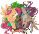 My Little Pony-Theorie