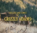 The Life and Times of Grizzly Adams (series)