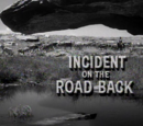 Incident on the Road Back