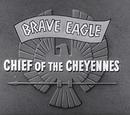 Brave Eagle (series)