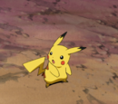 Pokémon Clones