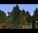 Amber Biomes