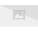 Frank Castle (Earth-10515) Punisher Vol 8 15.jpg