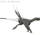 Aquilatherium arabicus