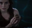 Bracelets magiques