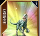 Troodon/JW: TG