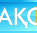 Television channels in Kazakhstan