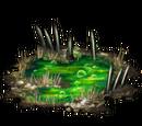 Poison Swamp