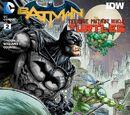 Batman/TMNT 02