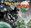 Batman/Teenage Mutant Ninja Turtles Vol.1 2