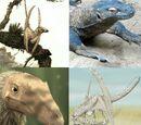 Draconiformes
