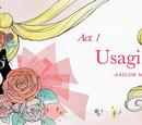 Pretty Guardian Sailor Moon Crystal episodes