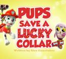 Pups Save a Lucky Collar