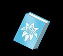 Cleric's Handbook (Gear)