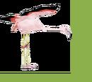 Chilean Flamingo (Zoo Tycooner FR)