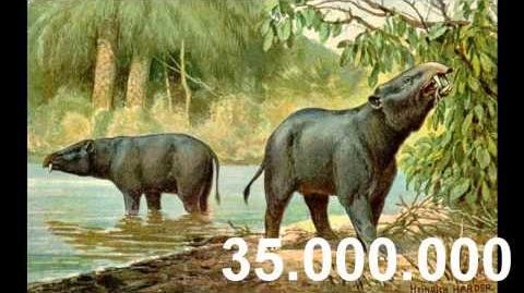 La evolución del Elefante- tarea de biologia