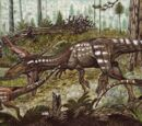 Tachiraptor
