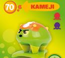 Kameji